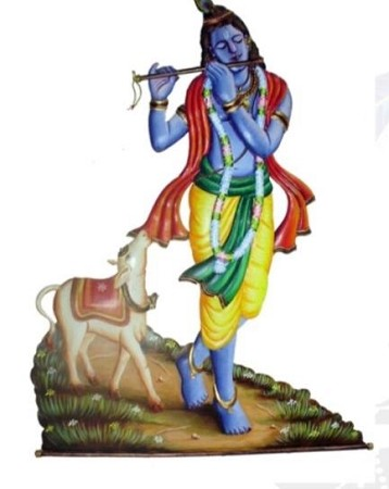 SR-Krishna With Calf